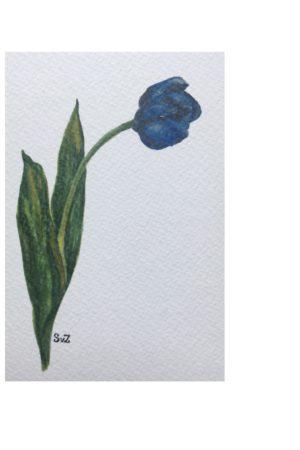 Tulp, aquarel, Waterkunst, A6kaart,