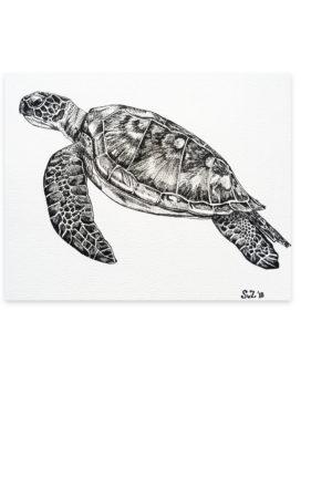 A6kaart, schildpad, waterkunst, art