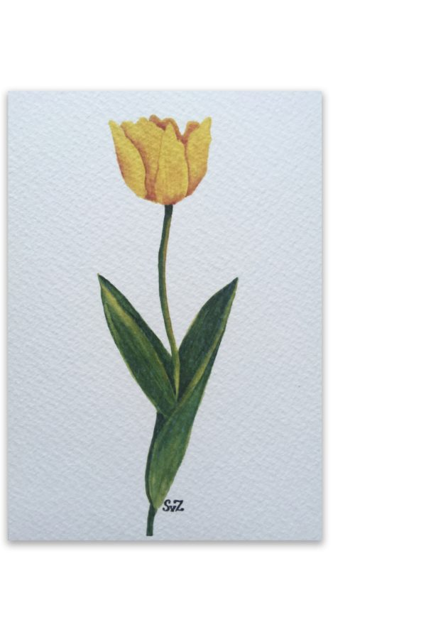 Gele tulp, artwork, Waterkunst