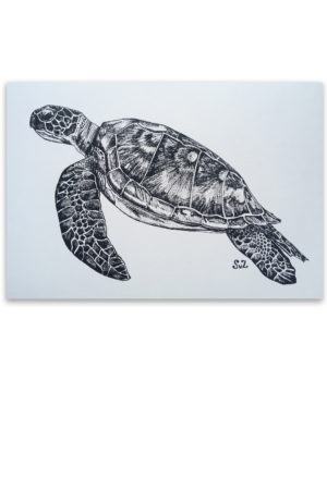 Artwork, inkt, zeeschildpad, Waterkunst