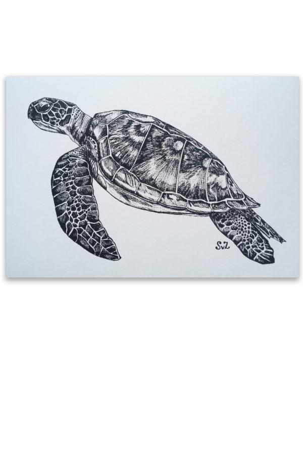 Artwork, inkt, zeeschildpad, Waterkunst