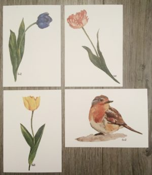 Aquarel, artwork, tulpen, roodborstje, waterkunst