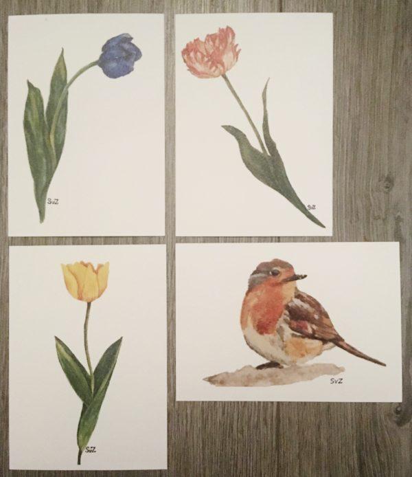 Aquarel, artwork, tulpen, roodborstje, waterkunst